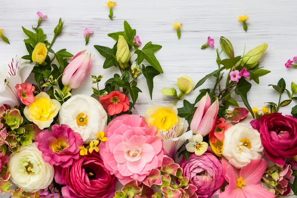 16 flowers for spring weddings that will make you swoon the lake when brides start daydreaming about spring weddings almost every fantasy has one thing in common lots and lots of flowers mightylinksfo